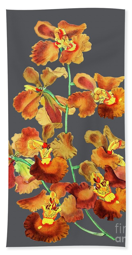 Vintage Bath Sheet featuring the mixed media Orchid Old Print by Baptiste Posters