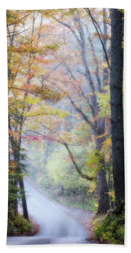 Appalachian Bath Towel featuring the photograph A Canopy Of Autumn Leaves by Lana Trussell