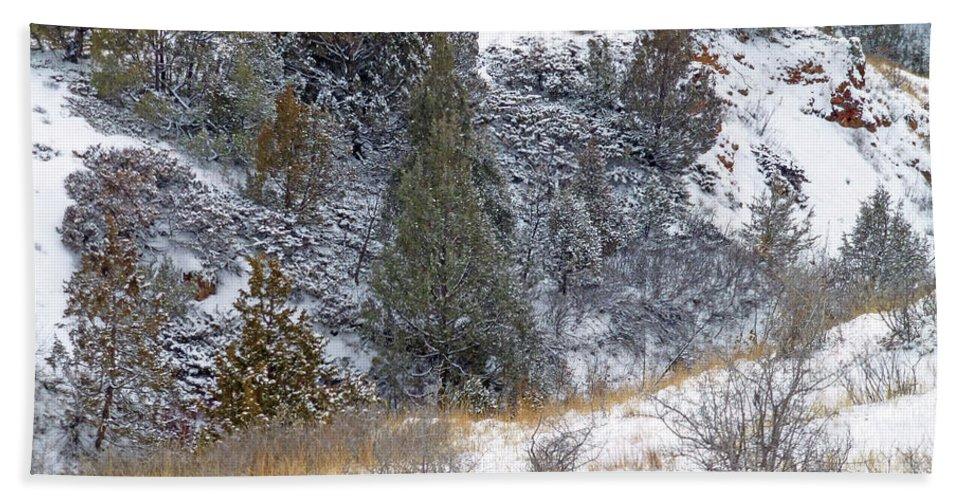North Dakota Bath Towel featuring the photograph Badlands Winter by Cris Fulton