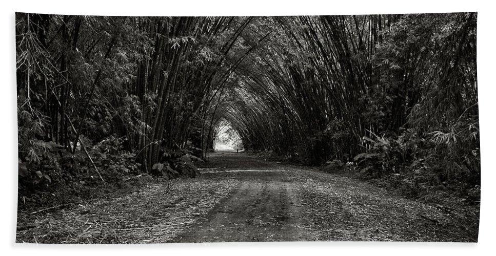 Trinidad Dreamscape Bath Towel featuring the photograph Bamboo Cathedral I by Trinidad Dreamscape