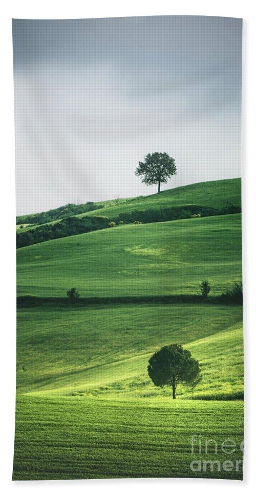 Kremsdorf Bath Towel featuring the photograph Bathed In Emerald by Evelina Kremsdorf