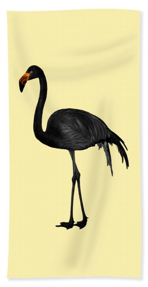 Black Flamingo 2 - Tropical Wall Decor - Flamingo Posters ...