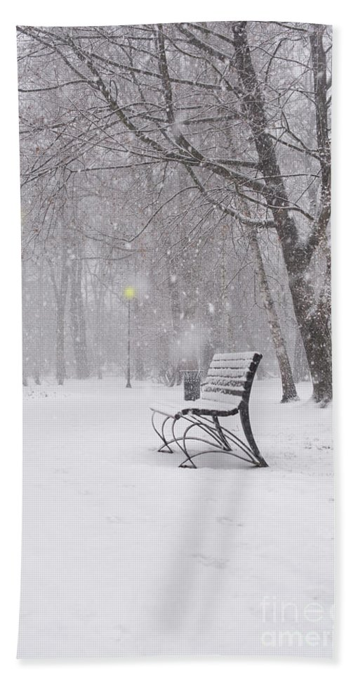 Bench Bath Towel featuring the photograph Blizzard In The Park by Juli Scalzi