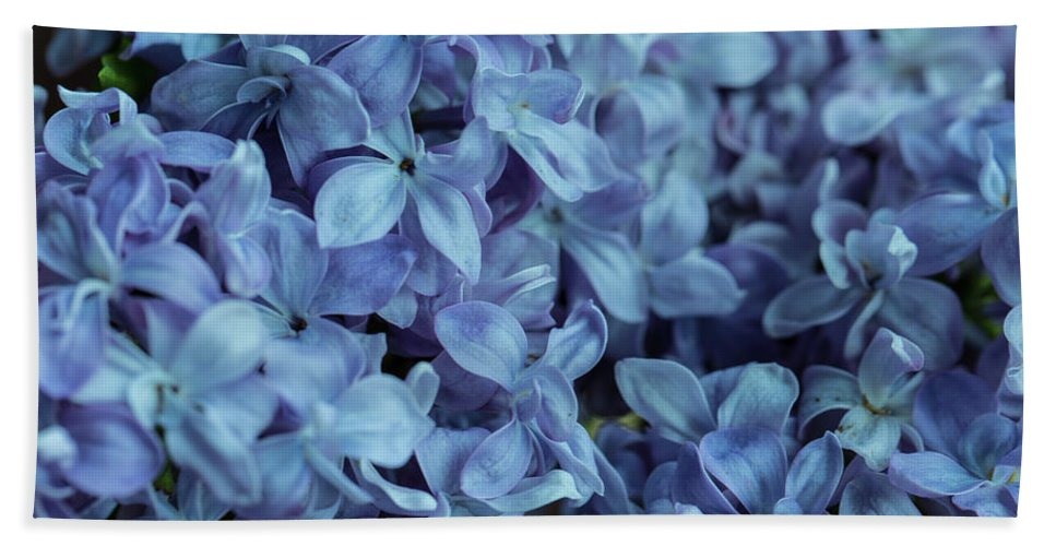 Apollo Fine Arts Bath Towel featuring the photograph Blue Lilacs by Mark Shoolery