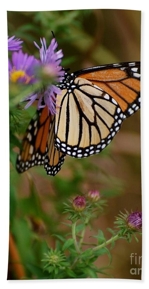 Butterfly Bath Towel featuring the photograph Butterfly by Deb Cawley