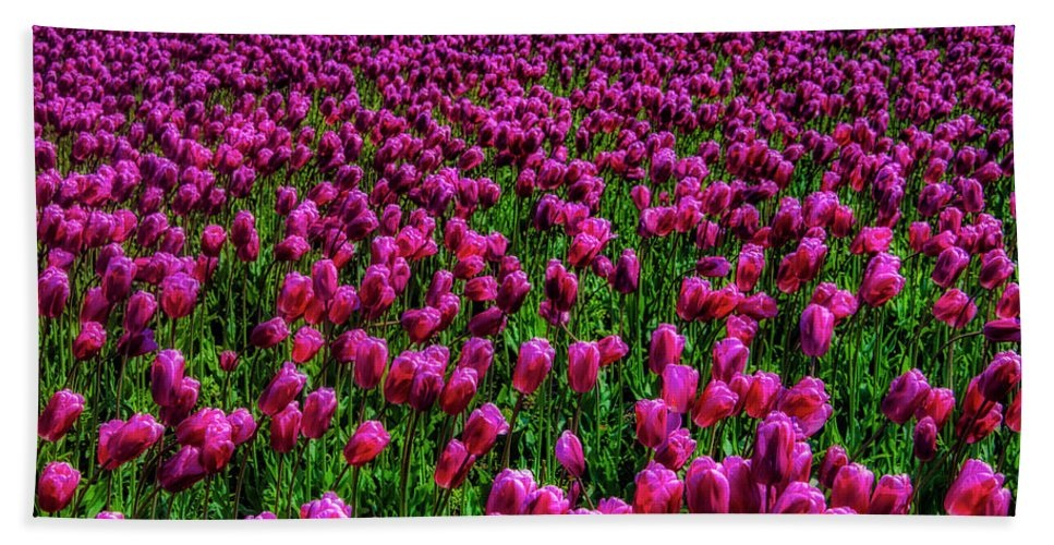 Tulip Bath Towel featuring the photograph Field Of Purple Tulips by Garry Gay