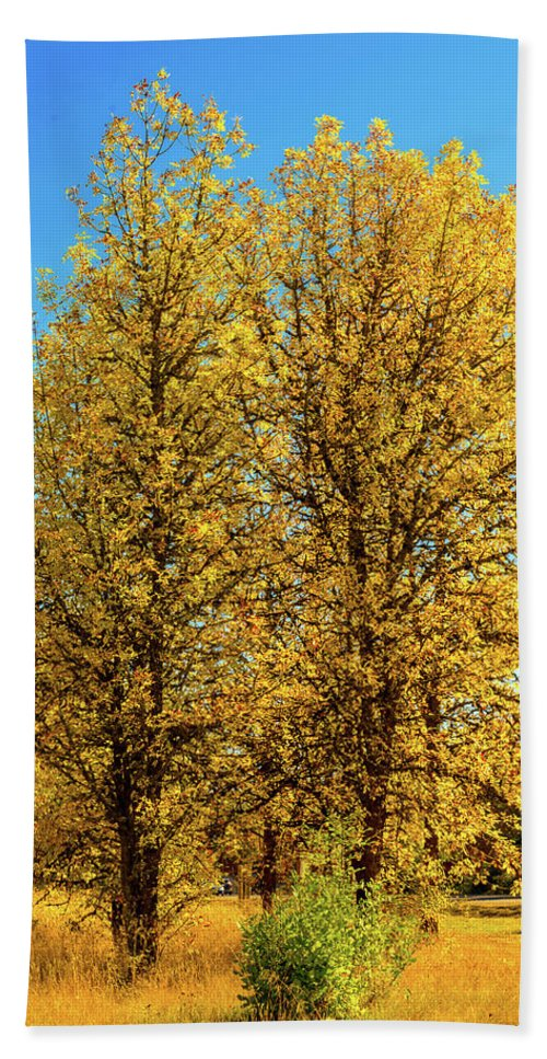 Landscape Bath Towel featuring the photograph Foliage by Dheeraj Mutha