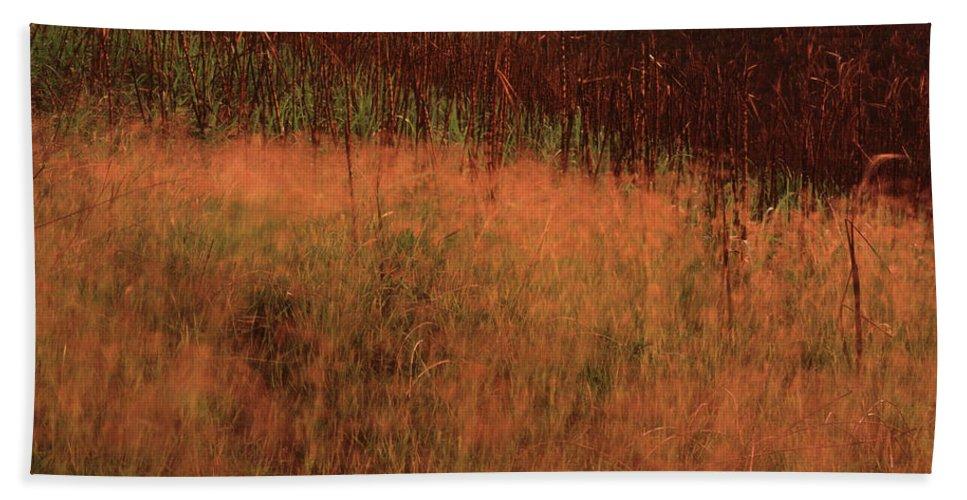Trinidad Bath Towel featuring the photograph Grasses And Sugarcane, Trinidad by Trinidad Dreamscape