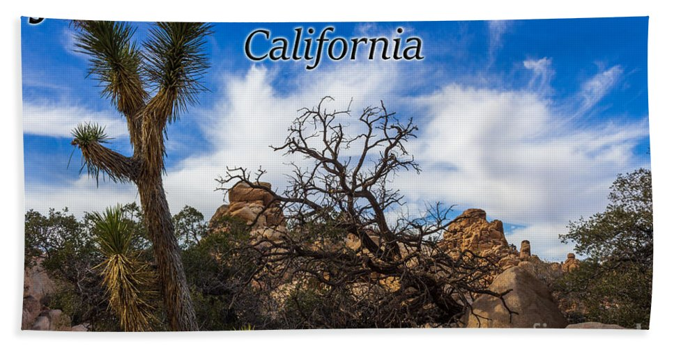 Joshua Tree National Park Hand Towel featuring the photograph Joshua Tree National Park, California Box Canyon 02 by G Matthew Laughton