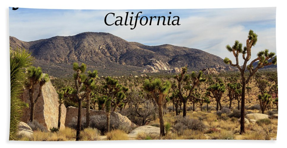 Joshua Tree National Park Valley Bath Towel featuring the photograph Joshua Tree National Park Valley, California by G Matthew Laughton