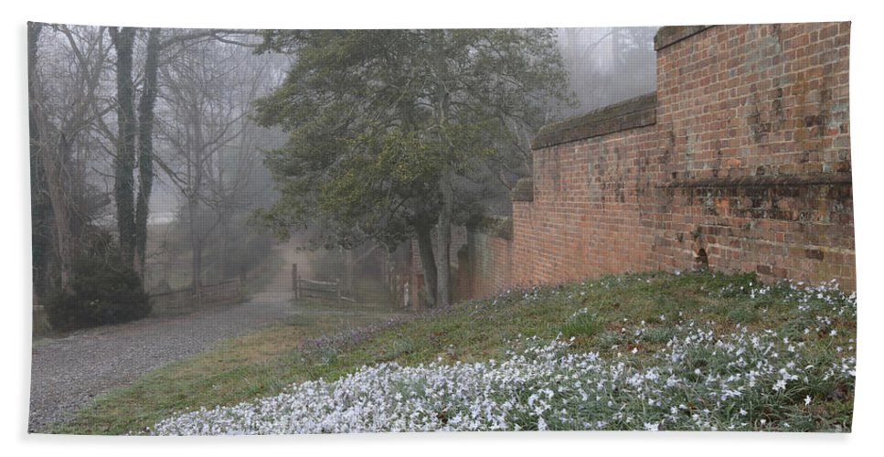 Governor's Palace Hand Towel featuring the photograph Misty Path And Starflowers by Rachel Morrison