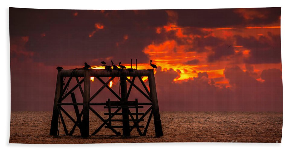 Bird Bath Towel featuring the photograph Pelicans Roost by Marvin Spates