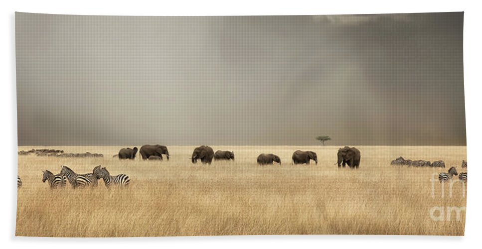 Mara Hand Towel featuring the photograph Stormy Skies Over The Masai Mara With Elephants And Zebras by Jane Rix