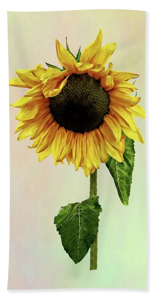 Sunflower Bath Towel featuring the photograph Sunflower With Peakaboo Bangs by Susan Savad
