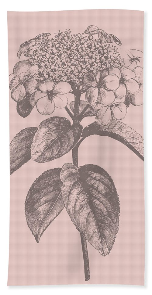 Flower Bath Towel featuring the mixed media Viburnum Blush Pink Flower by Naxart Studio