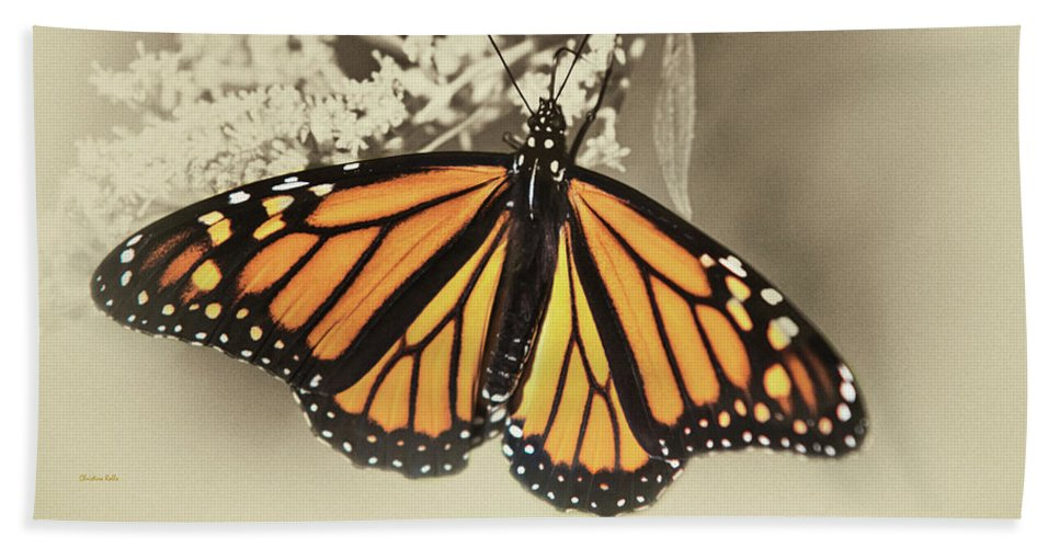 Monarch Butterfly Bath Sheet featuring the mixed media Wandering Migrant Butterfly by Christina Rollo
