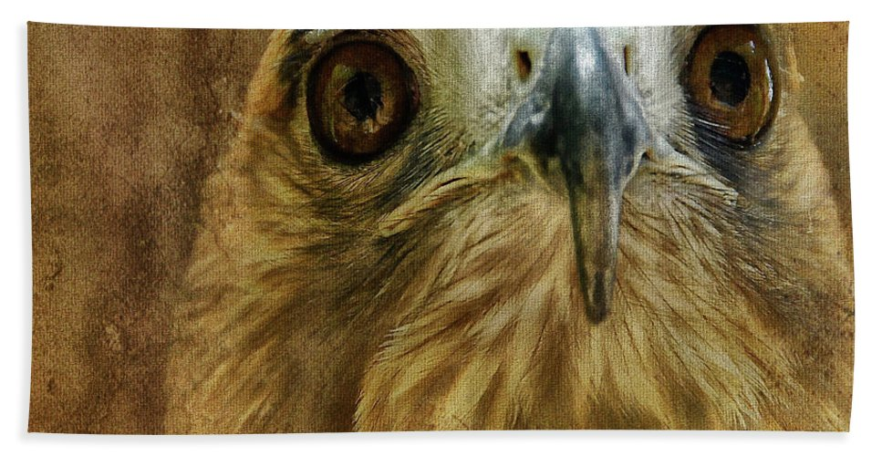 Hawk Bath Sheet featuring the photograph Your Majesty by Lois Bryan