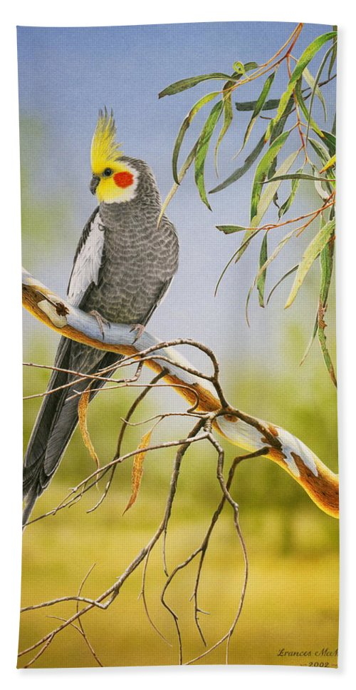 Bird Bath Sheet featuring the painting A Friendly Face - Cockatiel by Frances McMahon