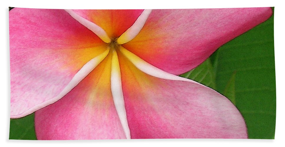 Hawaii Iphone Cases Bath Sheet featuring the photograph April Plumeria by James Temple