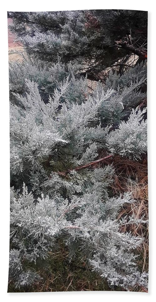 Scenery Bath Towel featuring the photograph First Frost by Ariana Torralba