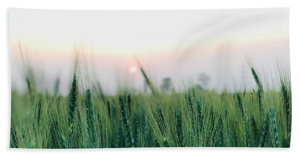 Lanscape Bath Towel featuring the photograph Greenery by Prashant Dalal