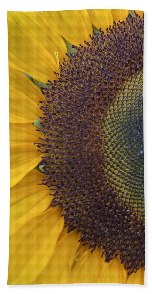 Sun Hand Towel featuring the photograph Half Sunshine by Rob Hans