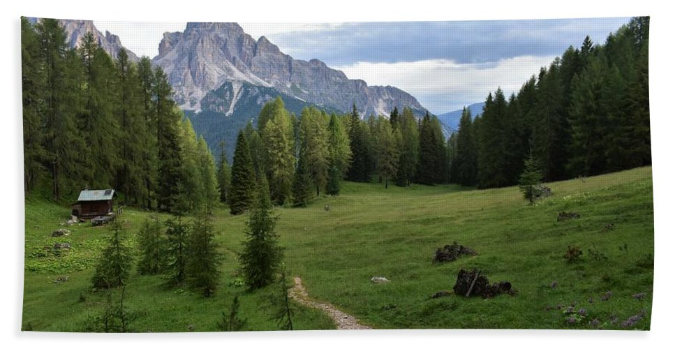 Dolomites Hand Towel featuring the photograph Meadow in the dolomites by Luca Lautenschlaeger
