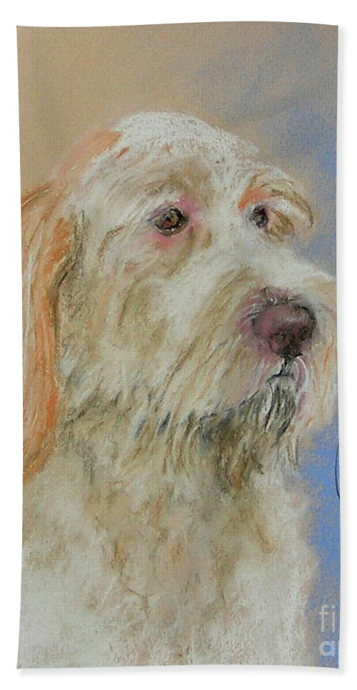 Italian Pointer Bath Towel featuring the drawing Noble Hunter by Cori Solomon