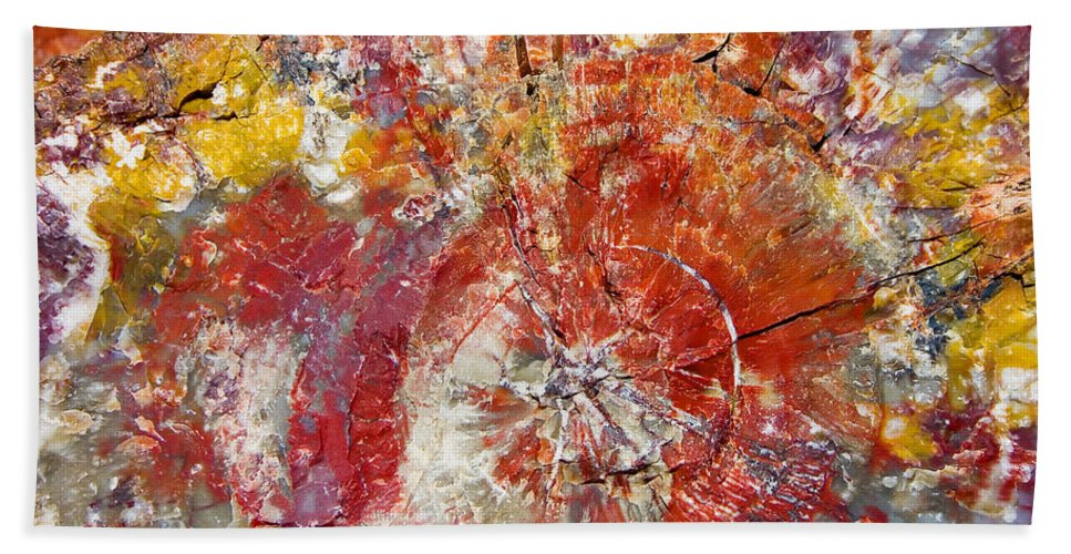 Petrified Wood Stone Texture Abstract Color Skip Hunt Bath Sheet featuring the photograph Painted Desert Wood 1 by Skip Hunt