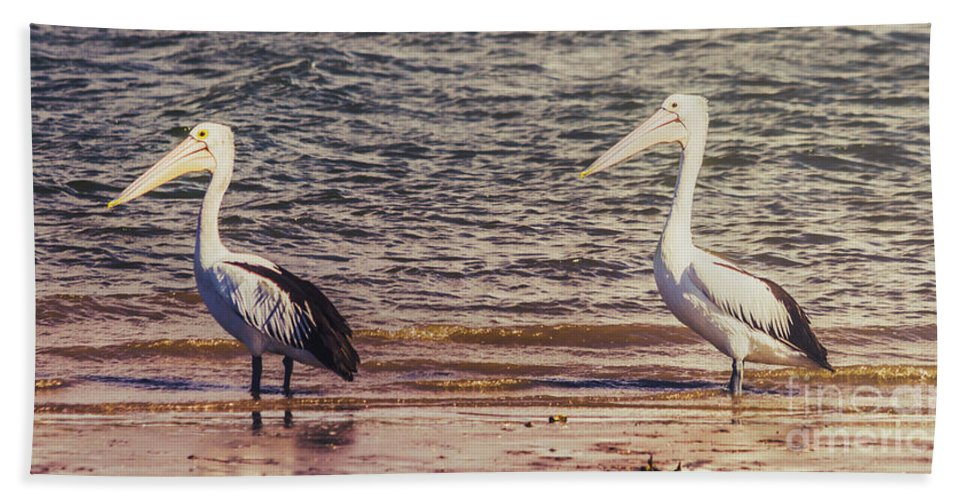 Coastline Hand Towel featuring the photograph Pelican Waters by Jorgo Photography - Wall Art Gallery