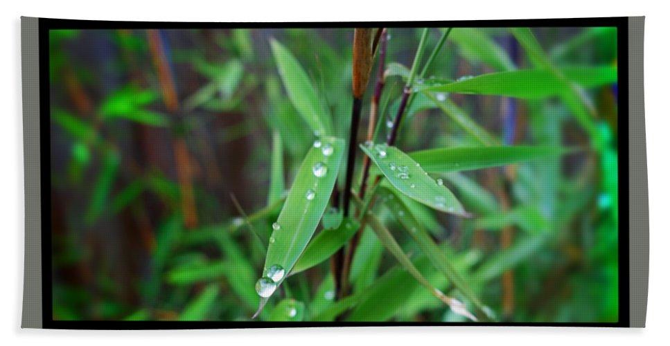 Rain Drops Bath Towel featuring the painting Rain On Bamboo by Charles Stuart
