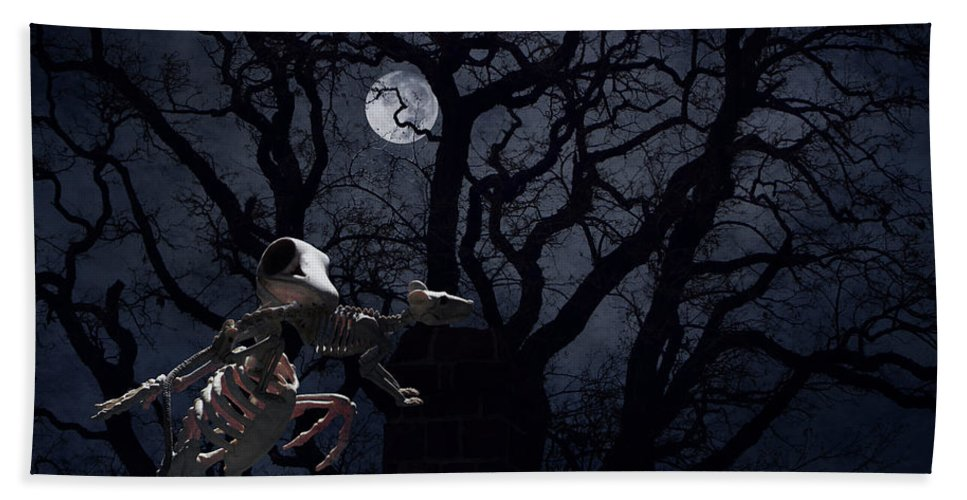Raven Bath Towel featuring the photograph Raven and Rat Skeleton in Moonlight - Halloween by Colleen Cornelius