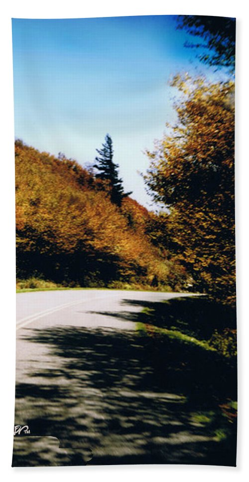 High In The Great Smoky Mtn. As You Round A Curve Stands This Noble Spruce. Hand Towel featuring the photograph Single Spruce by Seth Weaver