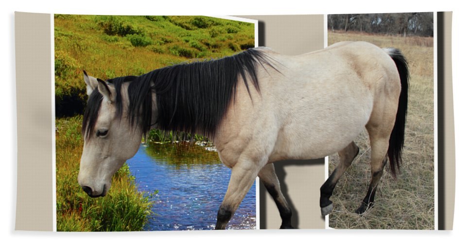 Horse Bath Towel featuring the photograph The Grass Is Always Greener On The Other Side by Shane Bechler