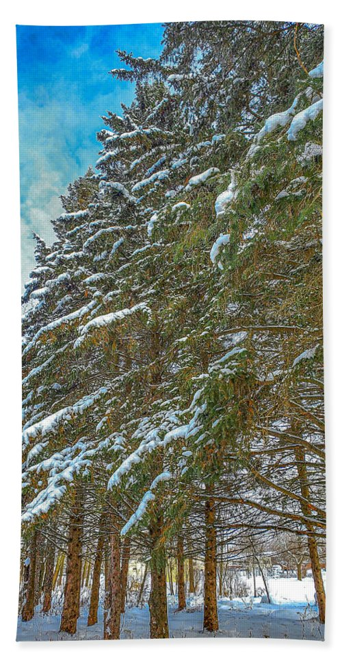 Nature Bath Towel featuring the photograph Winter trees by M Forsell