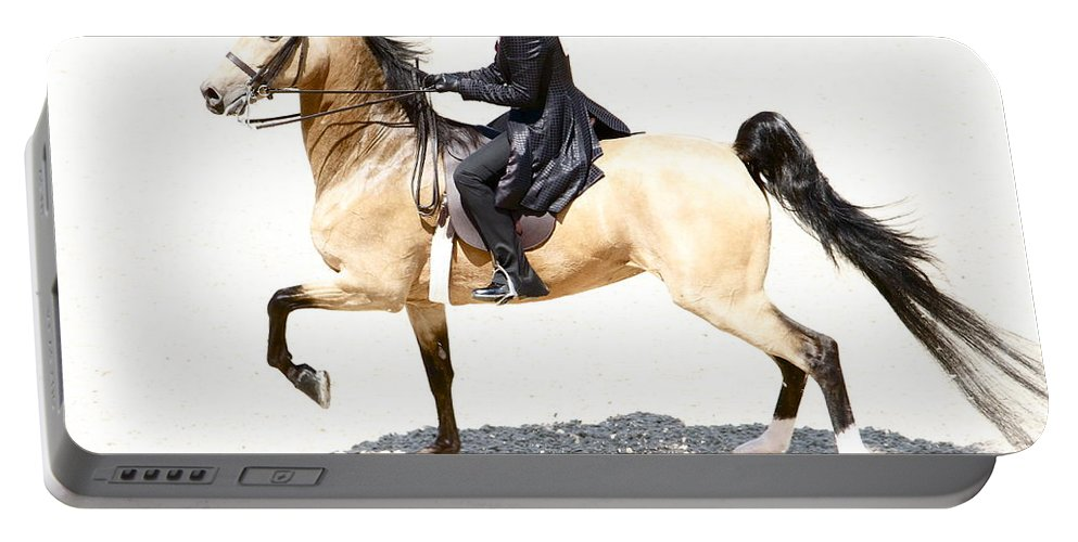 Horse Portable Battery Charger featuring the photograph Lovely Gaited Buckskin by Alice Gipson