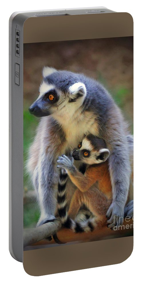 Wildlife Portable Battery Charger featuring the photograph  Mother And Baby Monkey by Savannah Gibbs
