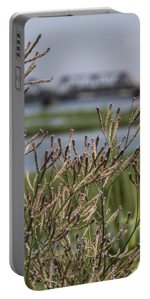 Wildflowers Portable Battery Charger featuring the photograph Purpletop Vervain Wildflowers by Kathy Clark