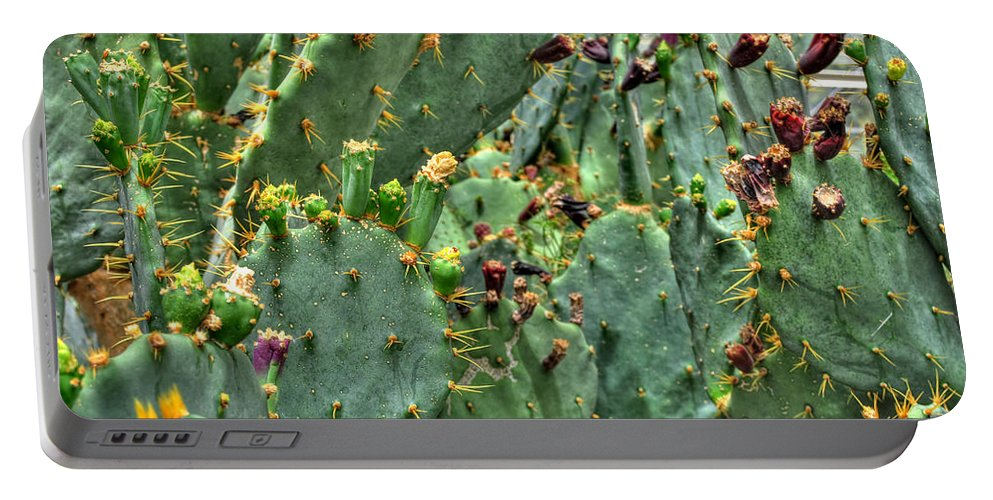 Buffalo Botanical Gardens Portable Battery Charger featuring the photograph 002 For The Cactus Lover In You Buffalo Botanical Gardens Series by Michael Frank Jr