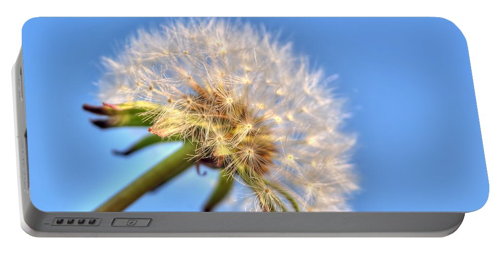 Taraxacum Portable Battery Charger featuring the photograph 003 Make A Wish by Michael Frank Jr
