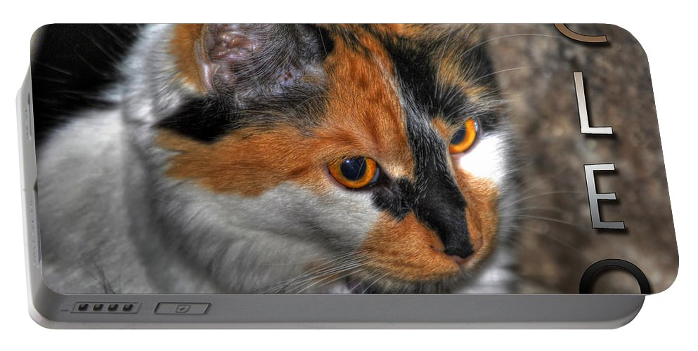 Cat Portable Battery Charger featuring the photograph 02 Cleo by Michael Frank Jr
