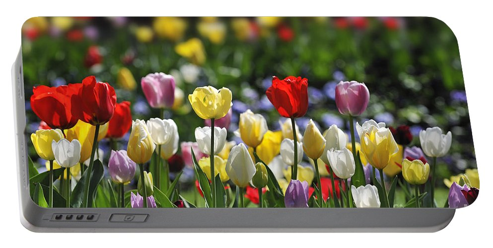 Colourful Portable Battery Charger featuring the photograph 090416p033 by Arterra Picture Library