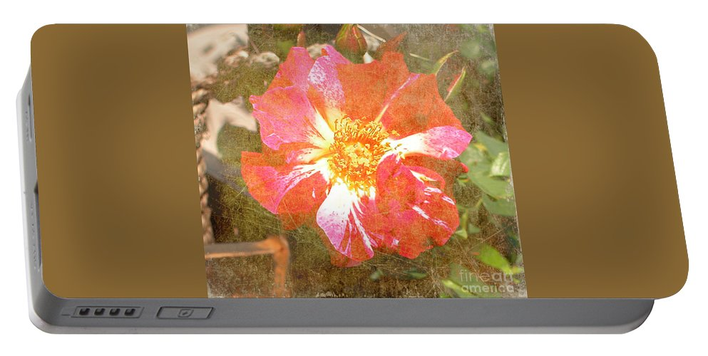 Summer Portable Battery Charger featuring the photograph 4th Of July Rose by Alys Caviness-Gober