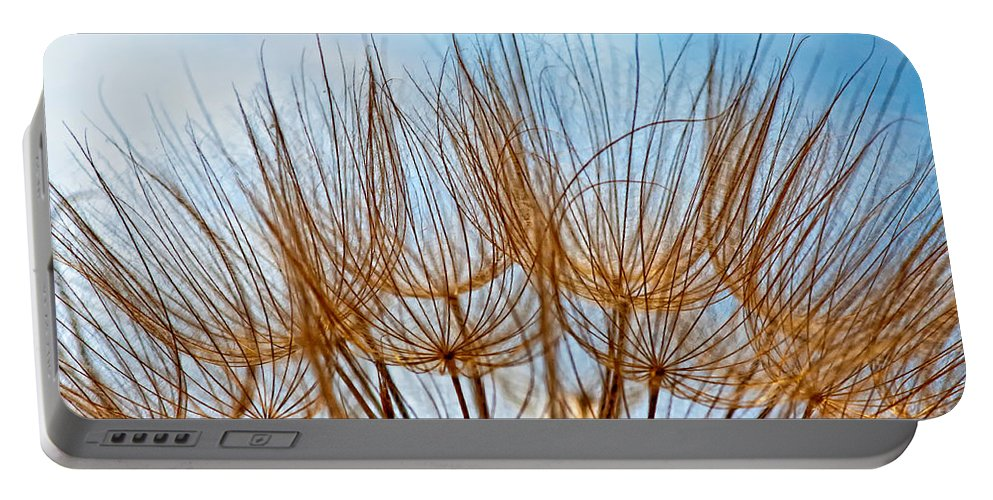 Macro Portable Battery Charger featuring the photograph A Delicate World by Steve Harrington
