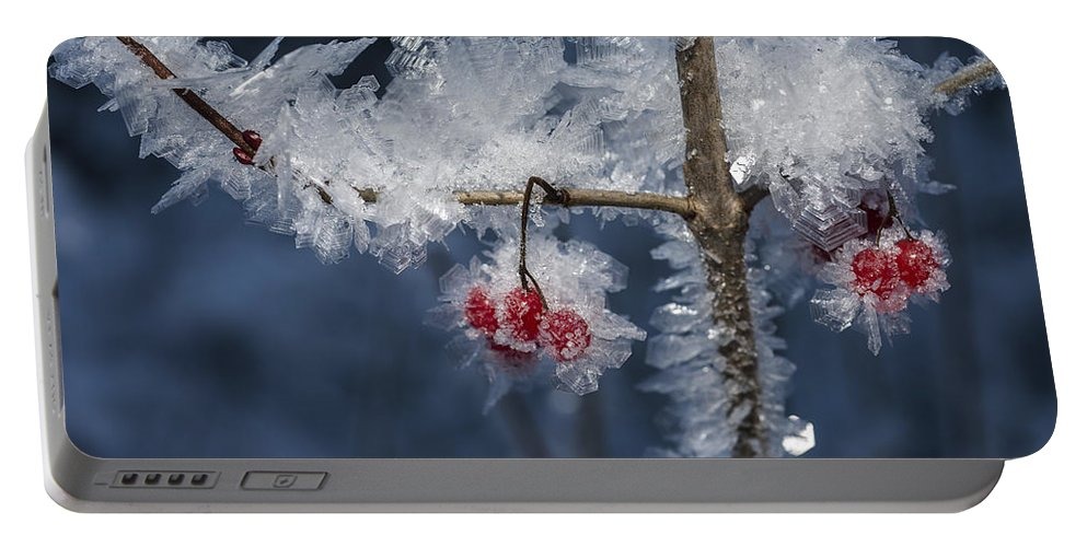 Ice Portable Battery Charger featuring the photograph Absolute Zero by Ted Raynor