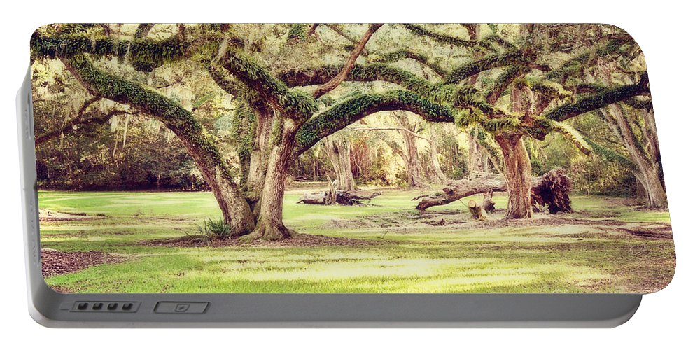 Oak Trees Portable Battery Charger featuring the photograph Ancient Oaks by Scott Pellegrin