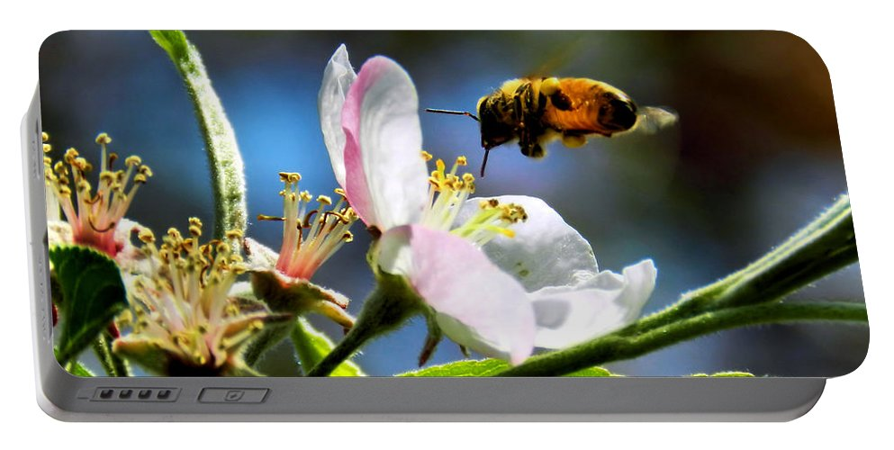 honey Bee Portable Battery Charger featuring the photograph Apple Blossom And Honey Bee by Sharon Woerner
