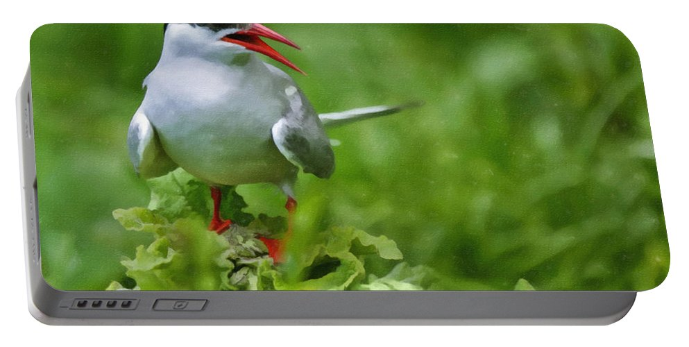 Artic Tern Portable Battery Charger featuring the digital art Arctic Tern by Liz Leyden
