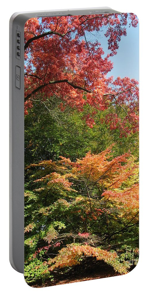 Trees Portable Battery Charger featuring the photograph Autumn Colors by Christiane Schulze Art And Photography