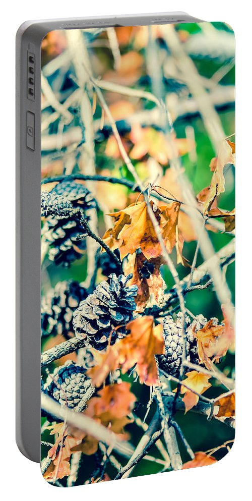 And Pinecone Portable Battery Charger featuring the photograph Autumn Leaves And Pinecone Background by Alex Grichenko